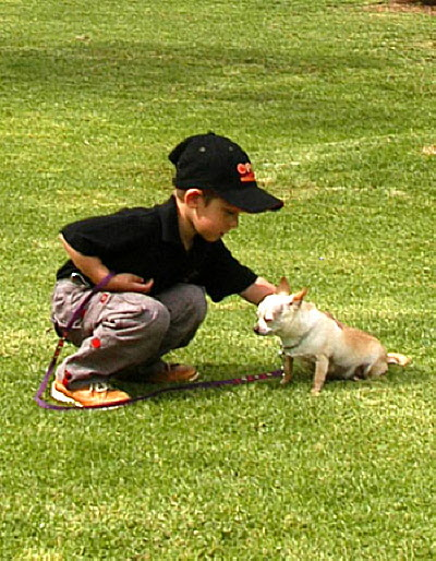 Dog Training Child